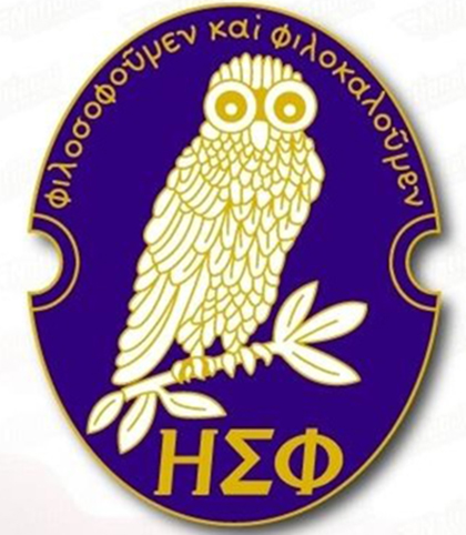 a blue lapel pin depicting an owl perched on a  branch